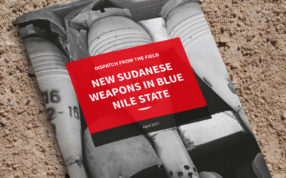 Blue Nile State